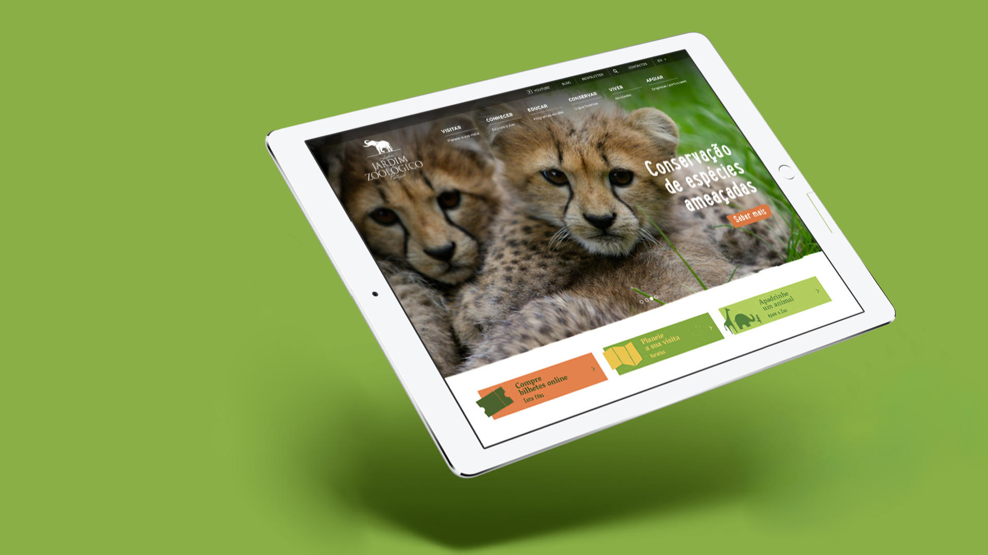 Website Zoo, content e email marketing